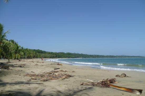 This photo of Manzanillo is courtesy of Trip Advisor