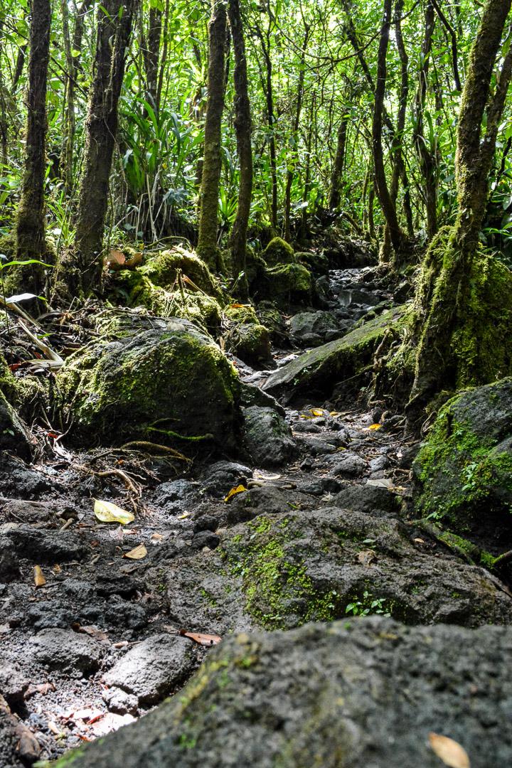 Lava rock trail
