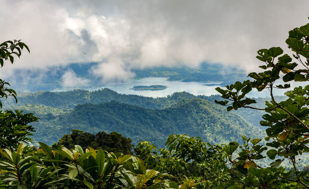 View of Arenal Lake from our hike in the Children's Eternal Rain Forest