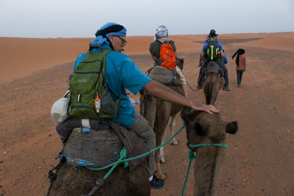 He just could not keep his hands off the camels!