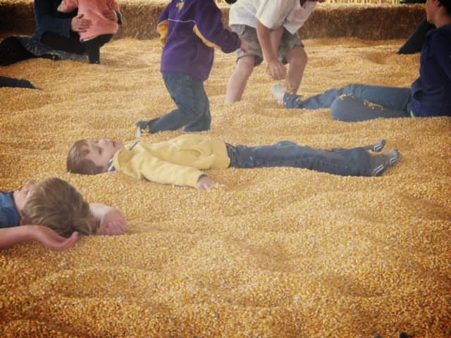 The corn pit at Sever's