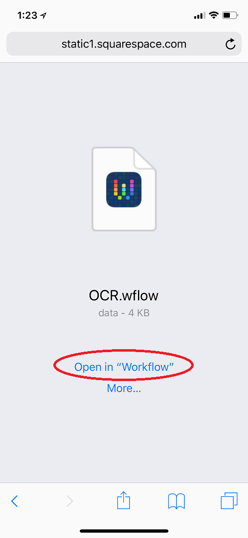 open_in_workflow.png