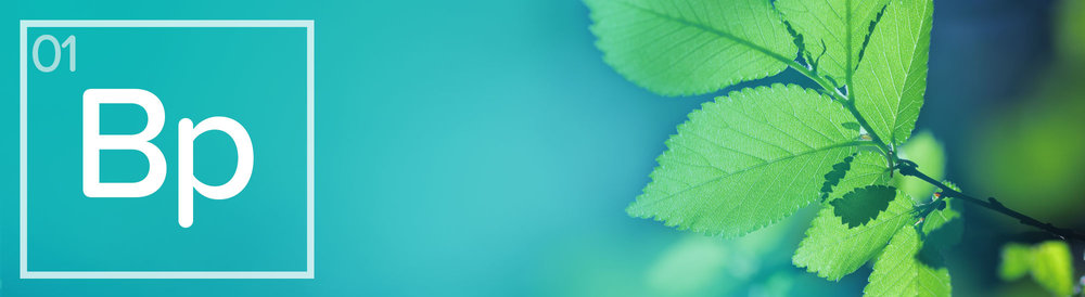 01-CCA-Business-Planning-banners.jpg
