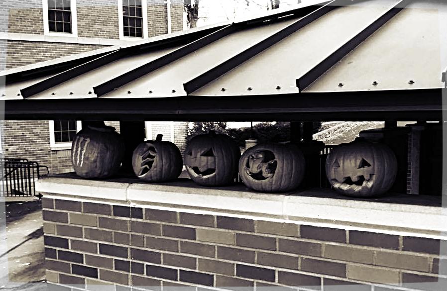 halloweenpumpkins.jpg