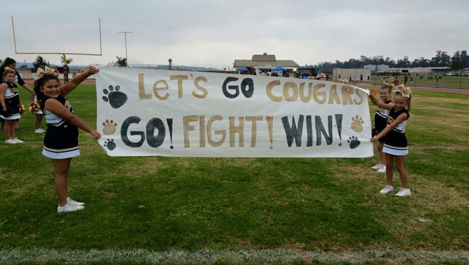 cheer banner.jpg