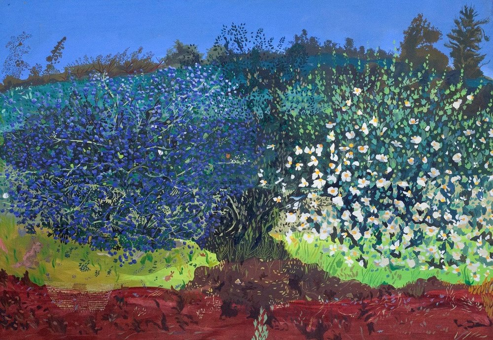 "Sarita Dougherty   Community Bloom: Ceanothus, Holly Oak, Matilija Poppy   Oil on board  46""W x 32""H x 2"""