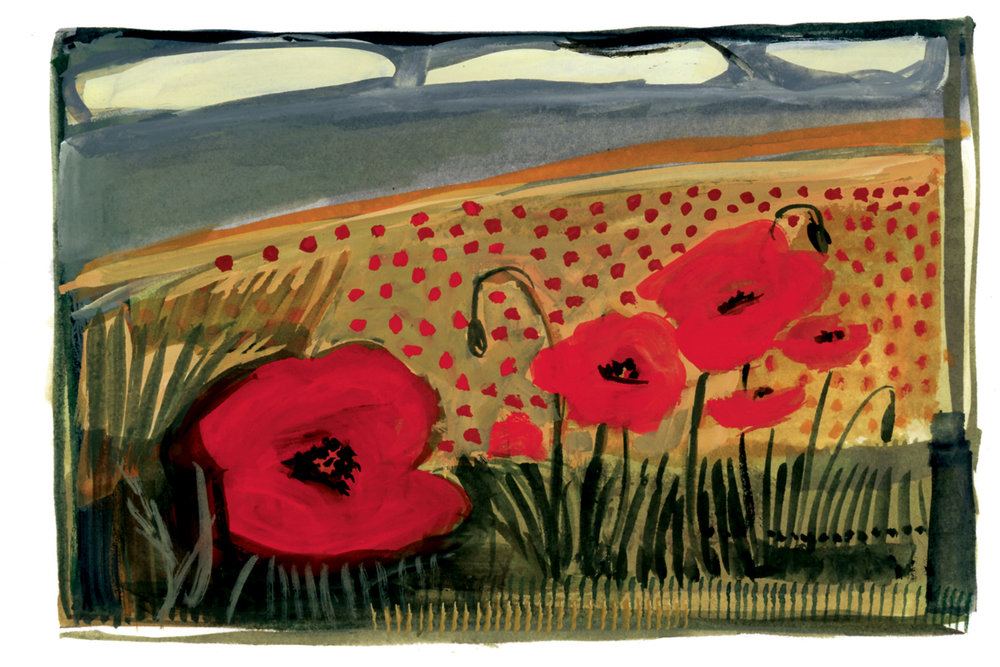 Poppies on a Hillside