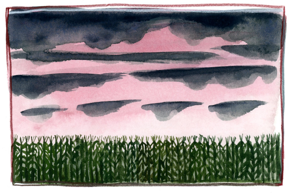cornfieldatsunset_watercolor_2017.jpg