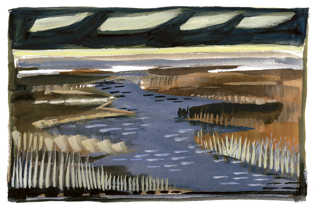 darksaltmarsh_watercolor_2017.jpg