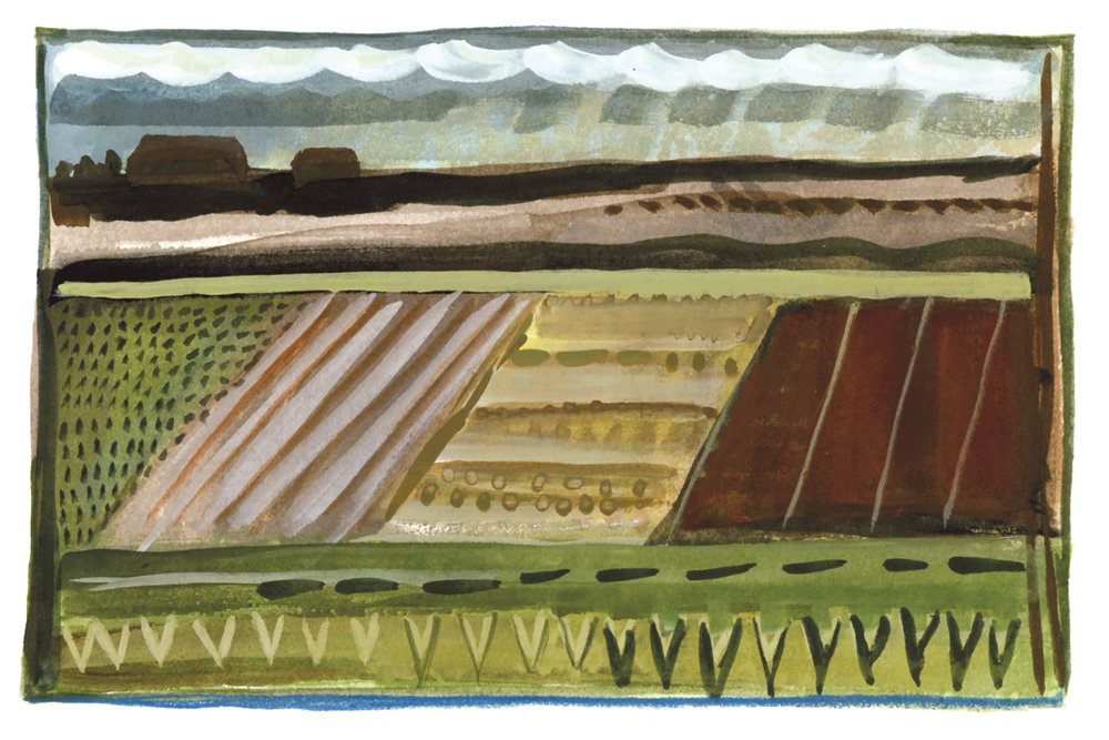 cropfields_watercolor_2017.jpg
