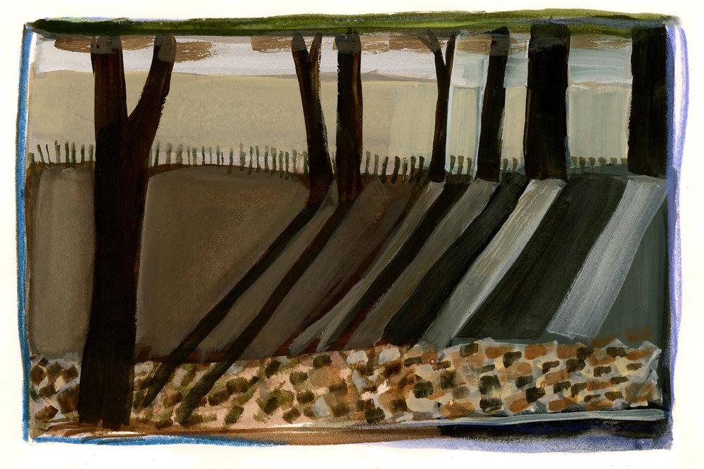 treeshadows_watercolor_2016.jpg