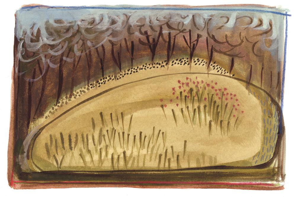 meadow_watercolor_2015.jpg