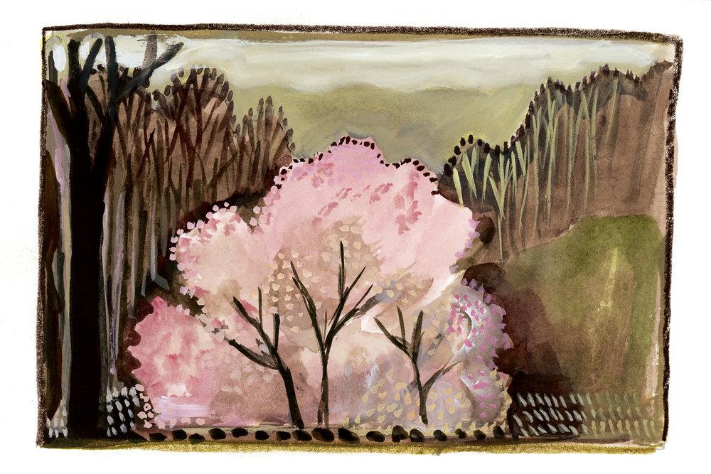 First Spring Blush
