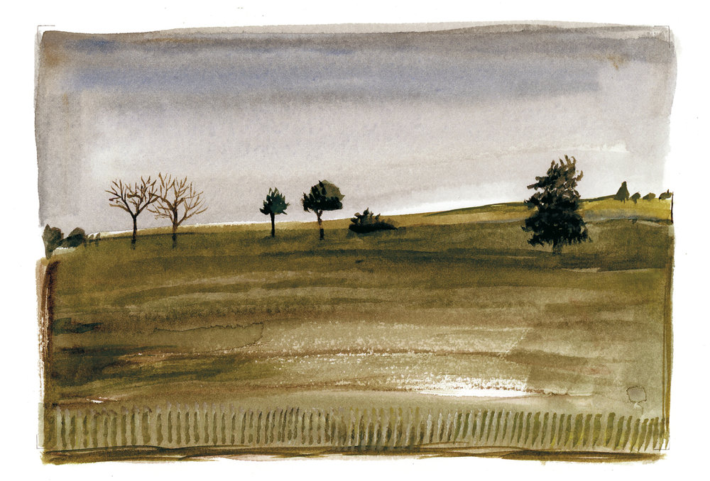 A Few Trees, Auvillar, France