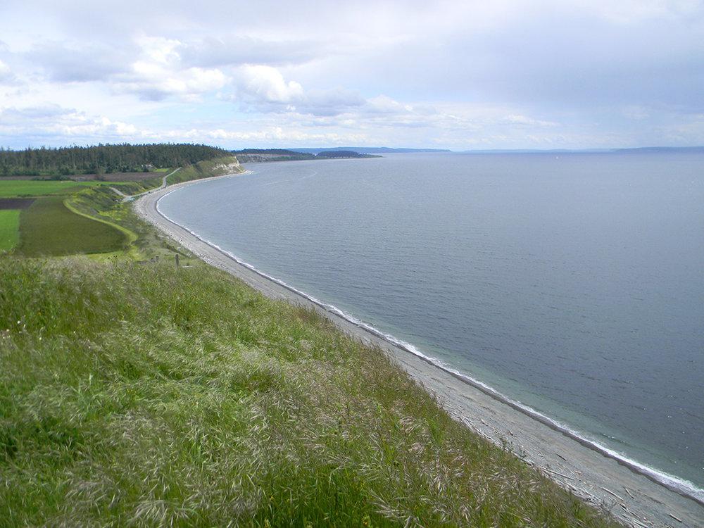 14.whidbey-shoreline-1.jpg