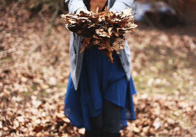 fall-tumblr-10