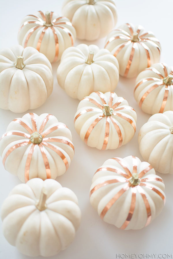 copper-striped-pumpkins
