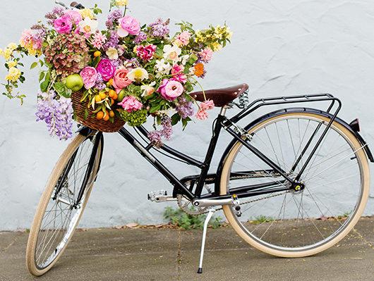 bike-12-e1493182012534.jpg