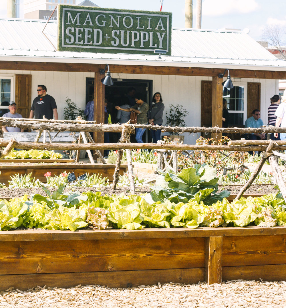 Magnolia Seed and Supply.jpg