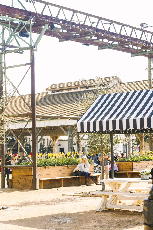 Magnolia Market Waco Texas.jpg