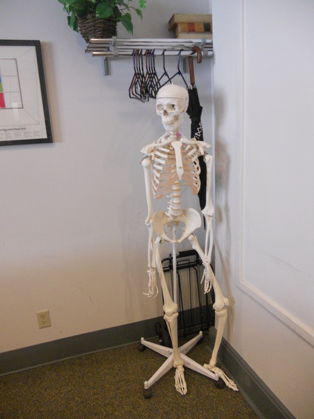 "Photo:  ""Aunt Sally"" the skeleton in Judge Erlich's courtroom"