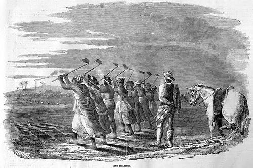 תחריט של שורת עבדים בשדה בג׳מייקה, תאריך לא ידוע במאה ה- 19