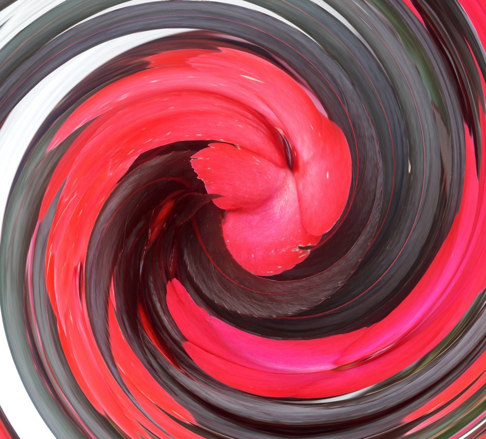 Swirled Impatiens.jpg