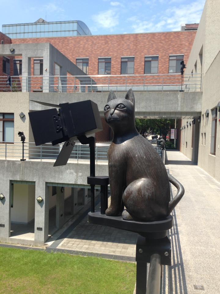 TNUA Cat.jpg