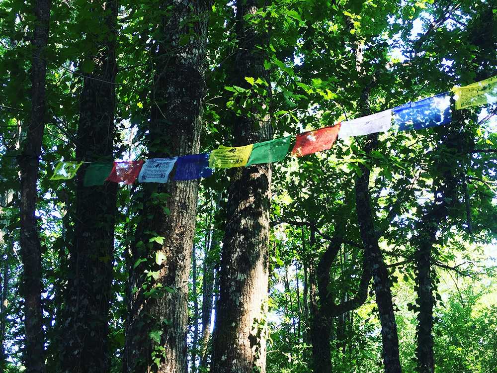 meditation-space-flags.jpg