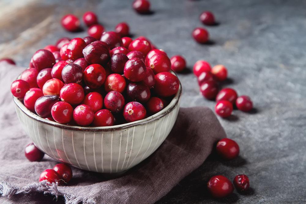 cranberry-wissen-und-zubereitung.jpg