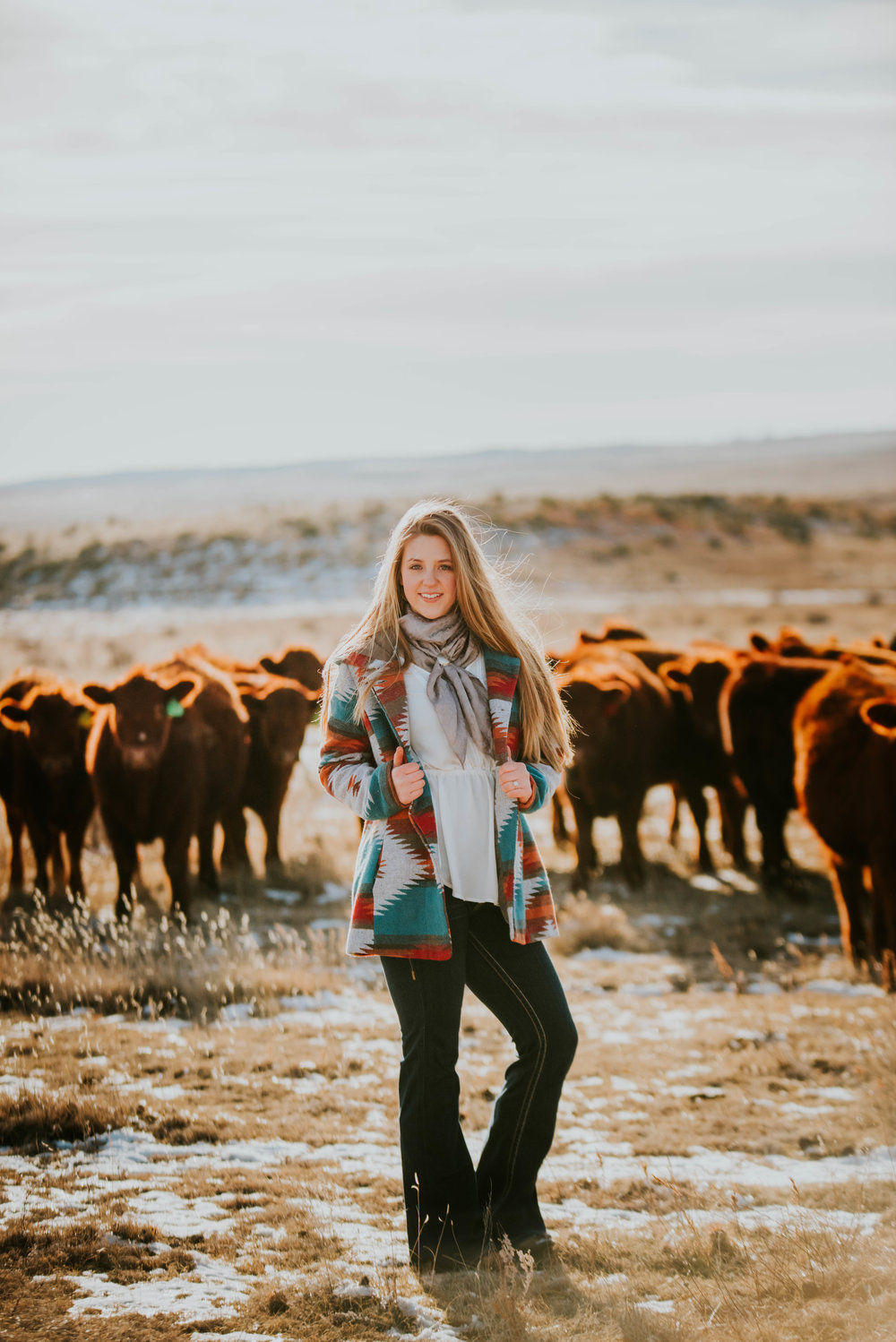 Miss. Miller's Photography | Colorado Photographer | Ranch Photo Session | cattle