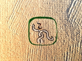 Image: Example Mayan Hieroglyph using  Scribe's Ink  pigments, gum arabic,hu'un paper & scribal tools included in kit