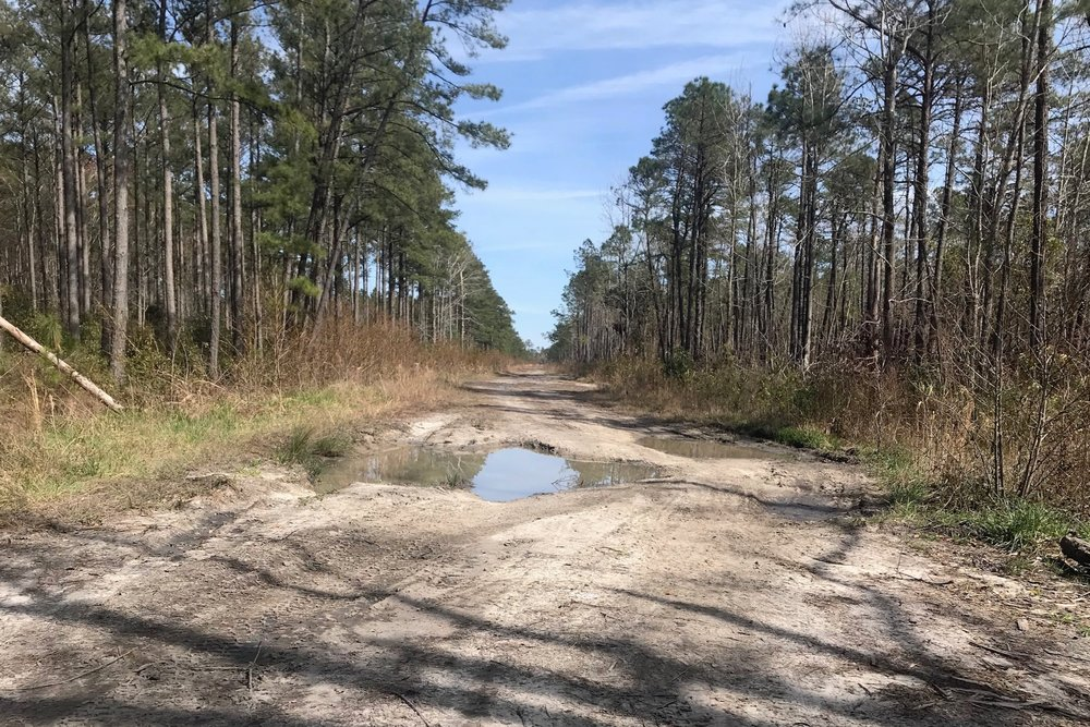 #potholeslikethese PC: Jordan Spoon