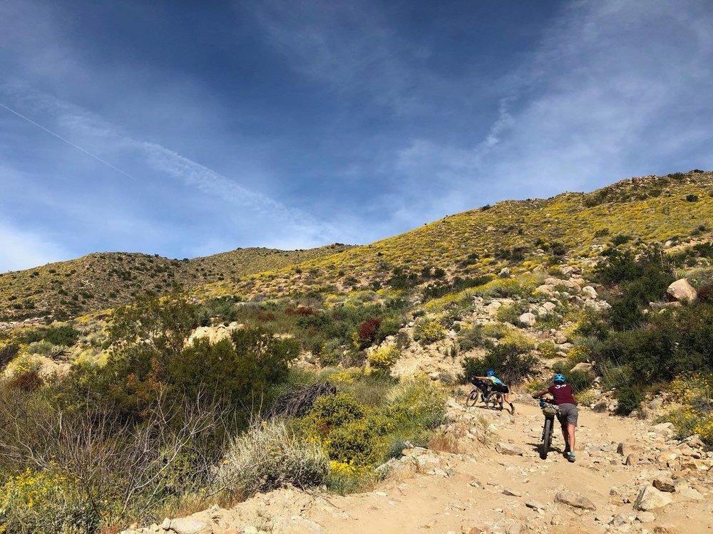 Hike-a-bike up Coyote Canyon