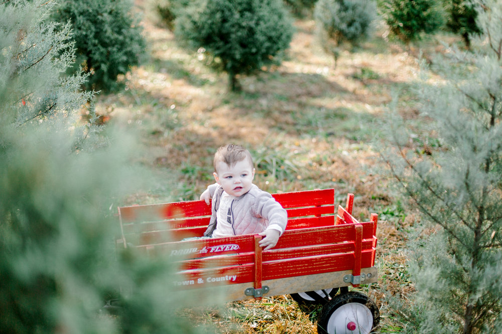 Jessica Sgubin Photography Atlanta Photographer Atlanta Portrait Photographer Atlanta engagement photographer atlanta family photographer atlanta baby photograpehr-15.jpg