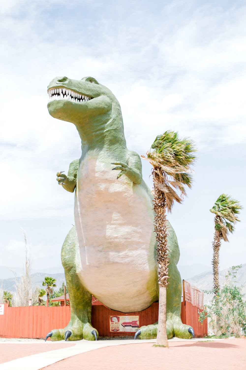 Jessica Sgubin Photography Atlanta Portrait photographer los angeles la salvation mountain greenhouse cactus garden moorten botanical garden cabazon dinosaurs santa monica joshua tree-21.jpg
