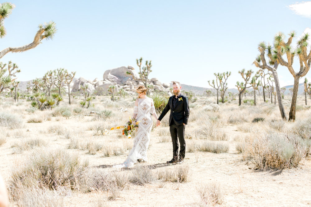 jessica sgubin photography atlanta portrait photographer engagement family couple wedding joshua tree wedding elopement-1-2.jpg