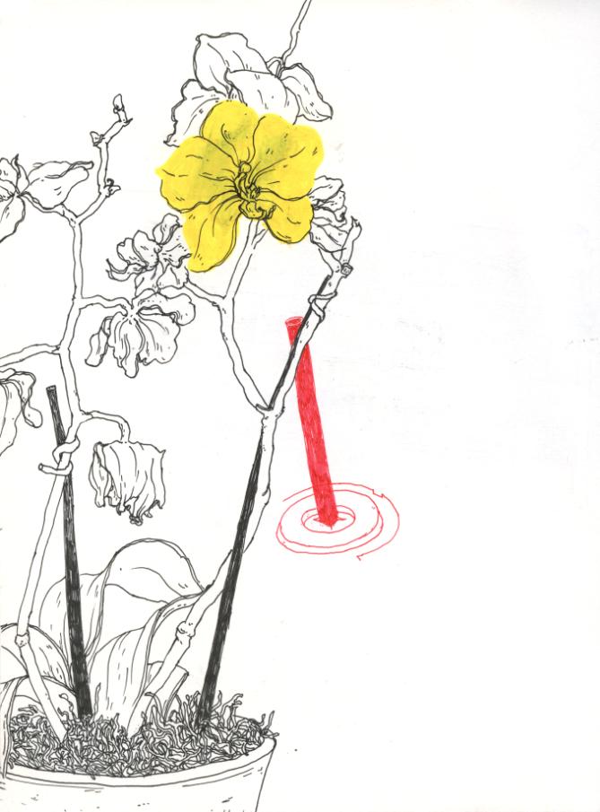 miotke_sketchbook_2018 3.png