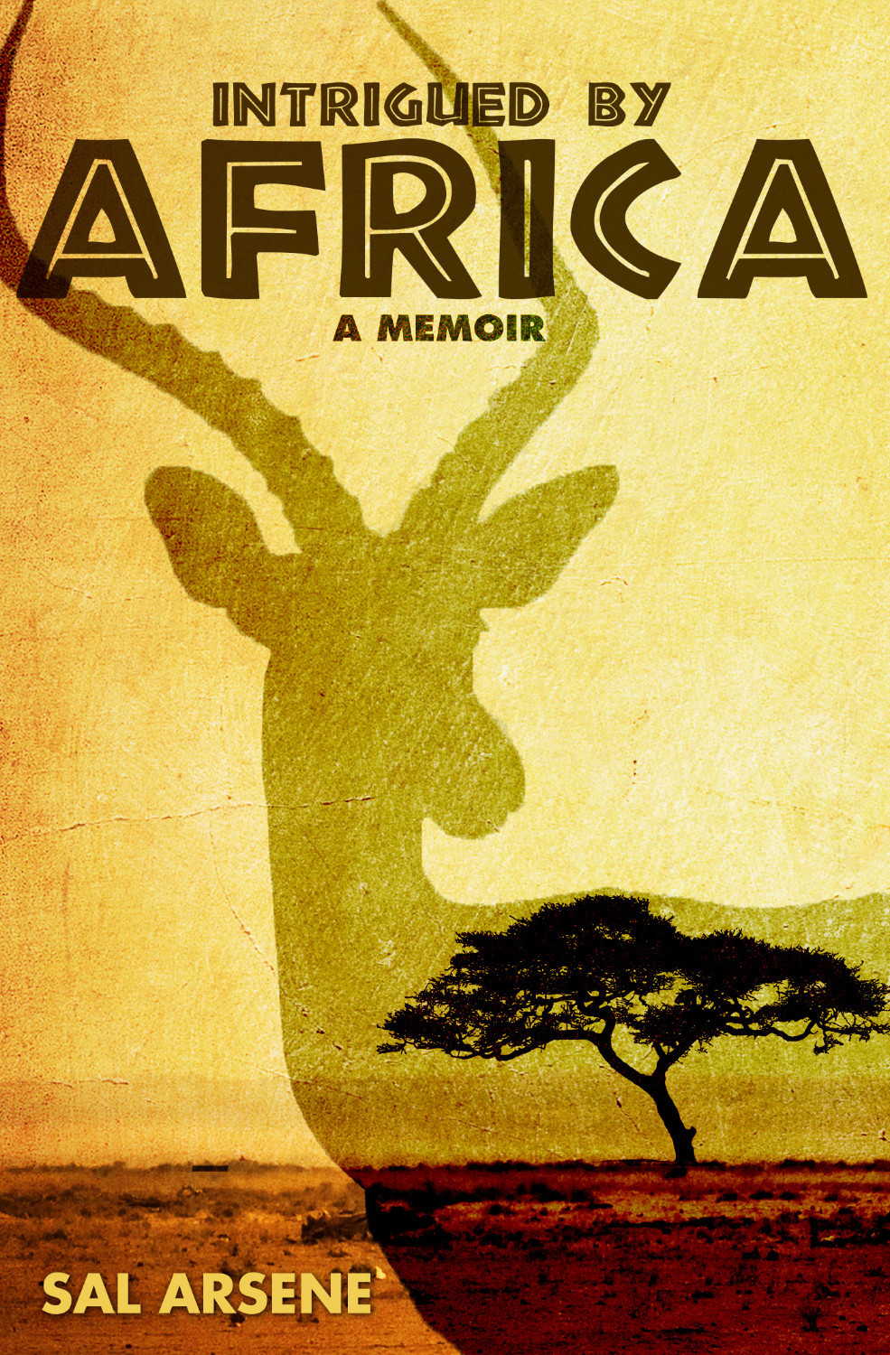 intrigued_by_africa_cover_1400px_wide_519-98.jpg
