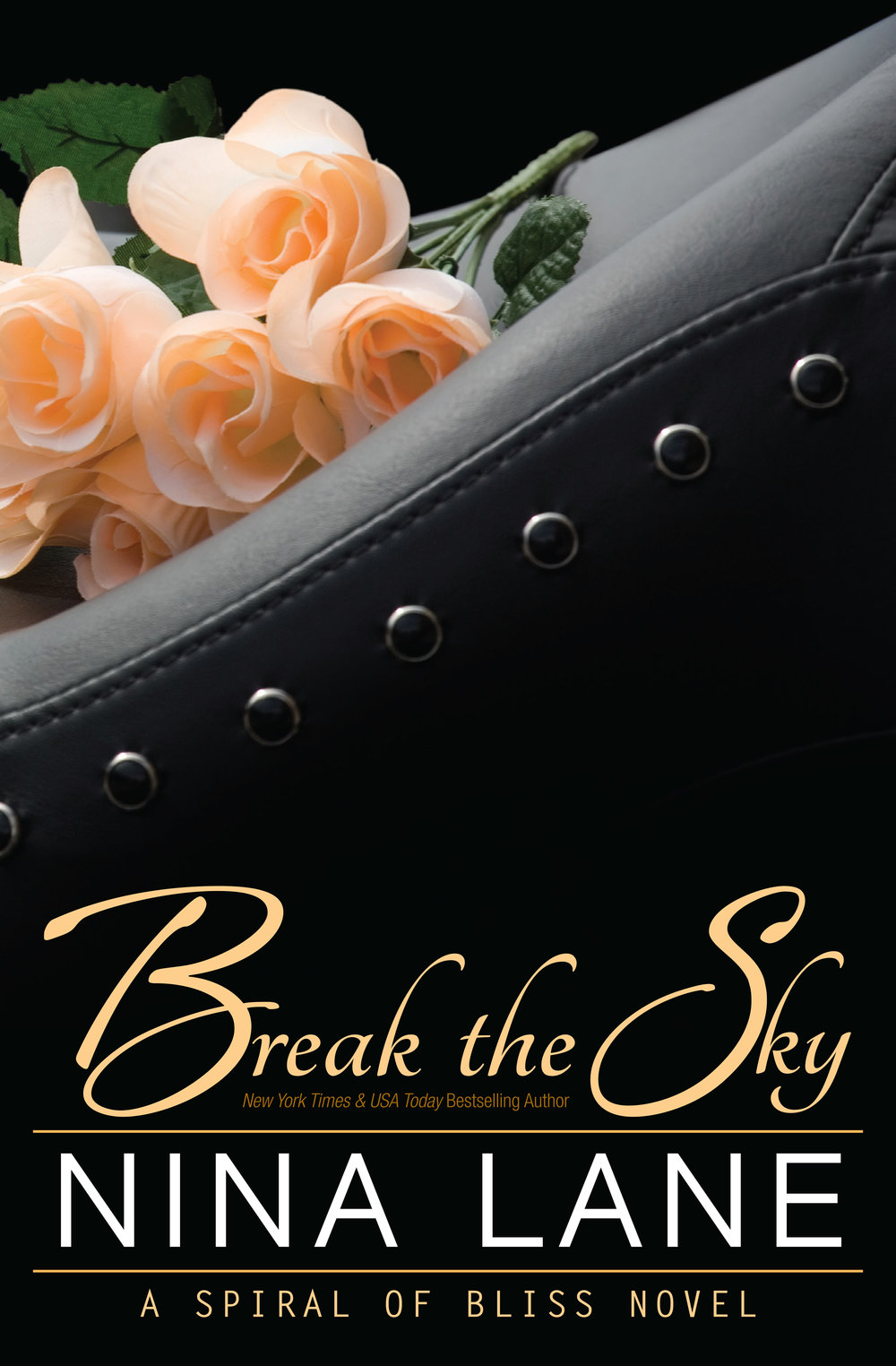SOB_5_BREAKTHESKY_FrontCovers_Object_10917_Kindle.jpg