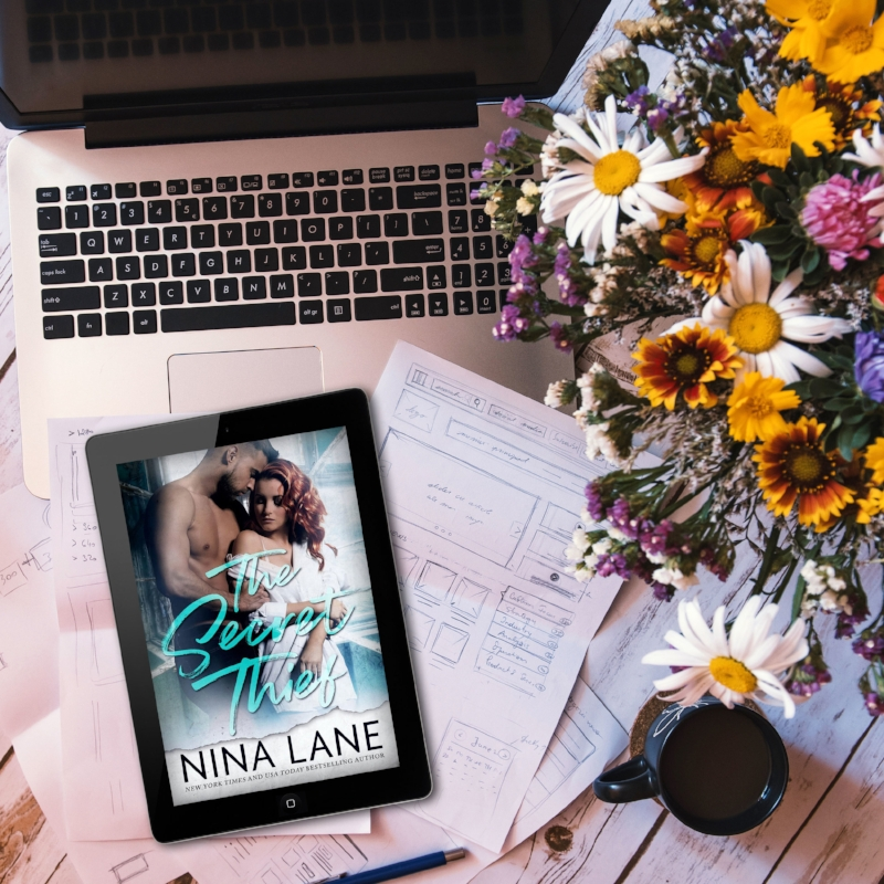 THE SECRET THIEF by Nina Lane