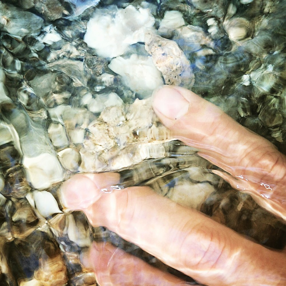 Graham hand in water.jpg
