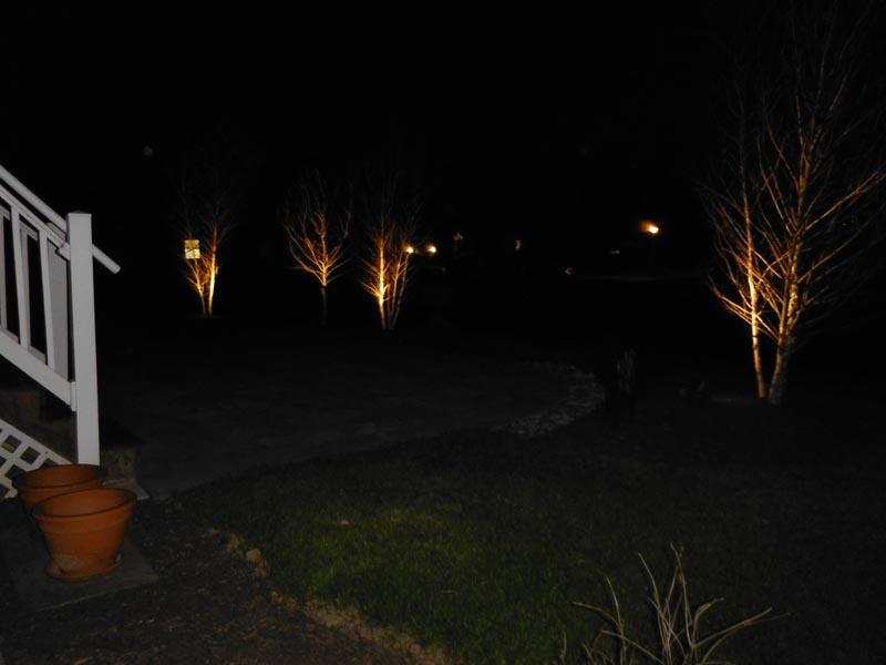 Low-Voltage Lighting 2014 (15).jpg