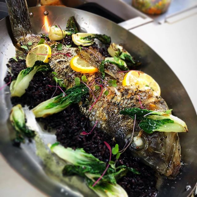 🌊Stop in this weekend and try either of our fish specials; • 1. Whole oven-roasted Black Sea Bass | 'Forbidden' rice | Grilled Baby Bok-Choy | Pomegranate Vinaigrette | mild red micros • 2. Grilled Yellowfin Tuna | Dark Cherry Mostardo | Corn | Tomatoes | Ong-Choy Spinach | Lemon-Basil Oil • For reservations click the link in our bio or call us at (856) 547 3117 • #ccskitchenbyob #haddonheights #nj #shot chefs #truecooks @truecooks #truecooksnj #newamerican #foodmob #chefsroll #eater #eaternj #foodie #foodporn #njrestaurants #njfoodie #njeats #jerseyfresh #phillyeats #phillyfoodie #food52 #f52 #zagat #instafood #foodandwine #f25food #bonappetit #foodofinstagram