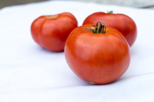 160820 Tomato Fest-2