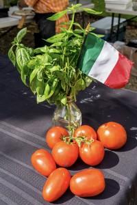 160820 Tomato Fest-30 italian flag tomato