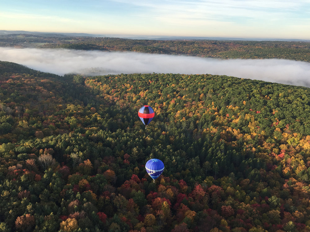 hot_air_balloon_fall_foliage_flight.jpg