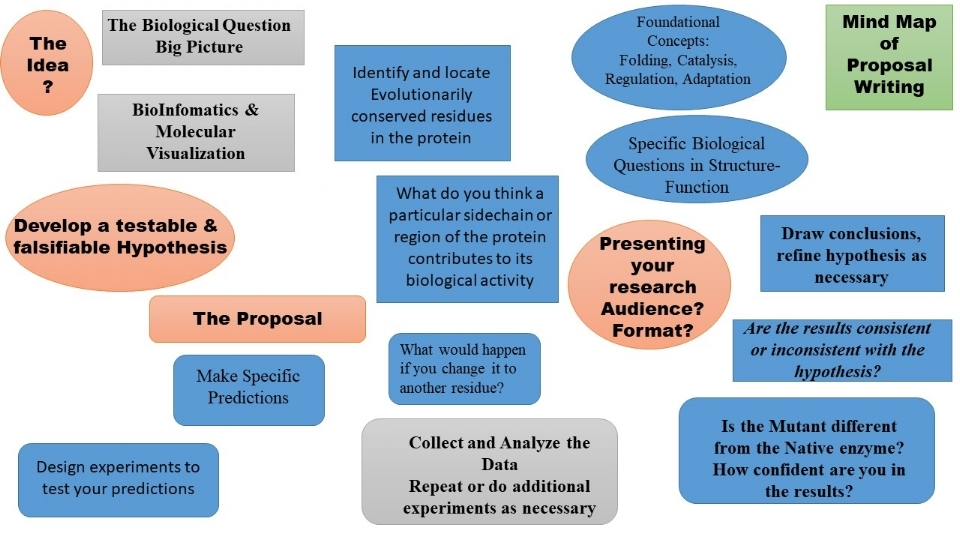 Mind Map of the process of writing a research proposal