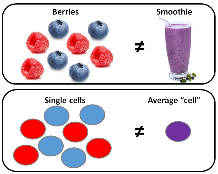 Single_Cells_vs_Average_Cell.PNG