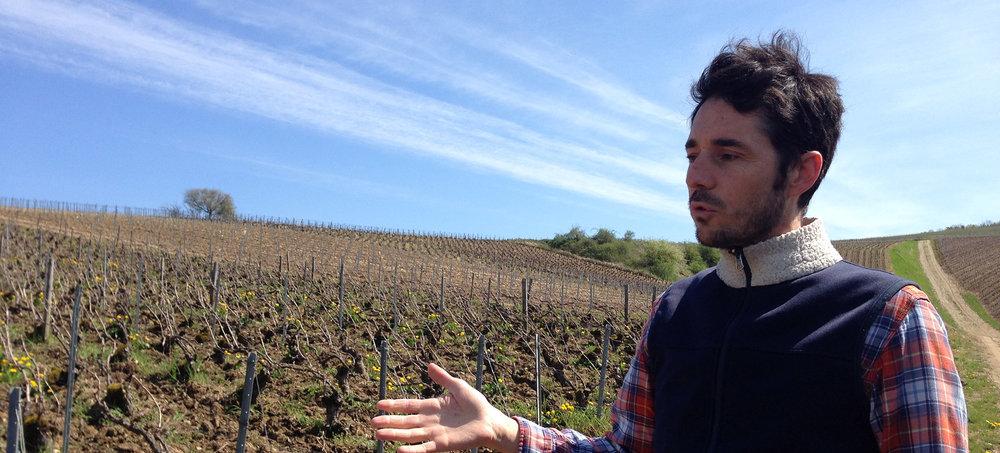 Cedric Bouchard in Presle Vineyard.JPG
